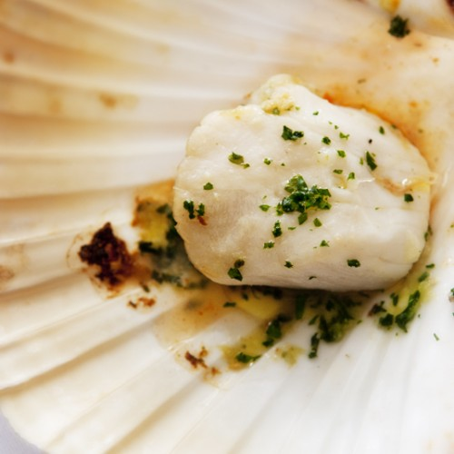 Scallops in the shell with Garlic Butter