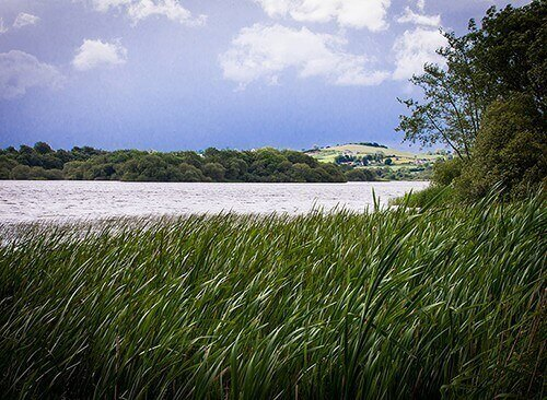 A view from the banks of Lough Ramor